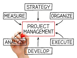 PMI Project Management Training